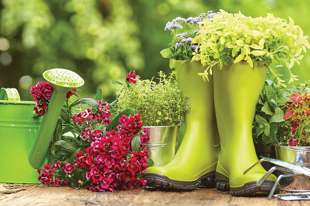 girls guide to gardening